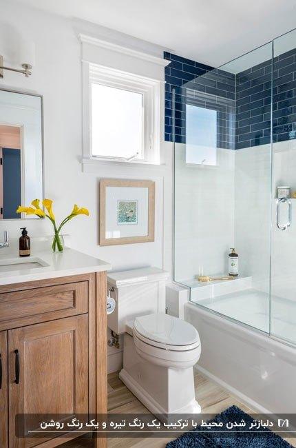 حمامی دلباز با کاشی های ترکیبی از رنگ آبی تیره و سفید
