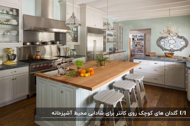 آشپزخانه ای به رنگ طوسی روشن و صفحه کابینت و کف چوبی با دو گلدان و گیاه روی کانتر