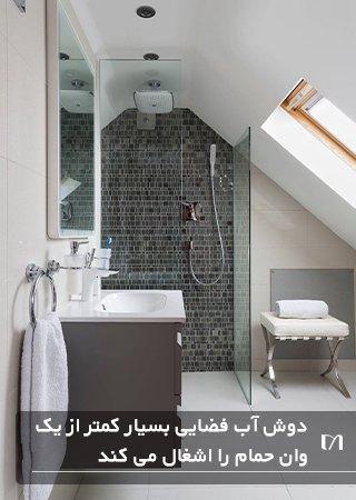 حمام مستر کوچک با یک دوش آب و روشویی