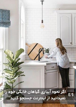خانمی در حال آبیاری گیاهان خانگی در آشپزخانه ای بسیار زیبا و شیک