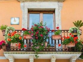 بالکن زیبای پر از گل با دیوارهای نارنجی
