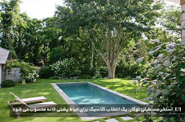 تصویری از یک استخر به سبک کلاسیک در حیاط با کف چمن کاری شده