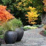 تصویر مسیری سنگی از یک محوطه پاییزی