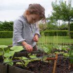 آموزش مسئولیت پذیری به کودکان با دادن مسئولیت بخشی از باغچه به آنها