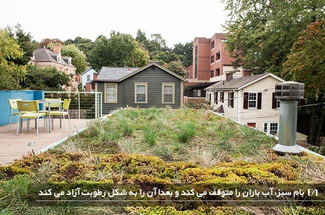 بام سبز خانه ی ویلایی بسیار بزرگ و جذاب با چیدمان میز و صندلی