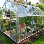 گلخانه شیشه ای کوچک در حیاط