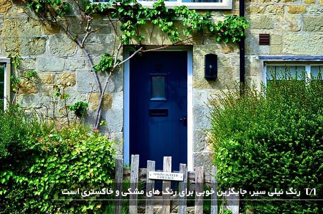 درب ورودی به رنگ آبی تیره و بسیار زیبا با گیاهان بزرگ و بوته ای