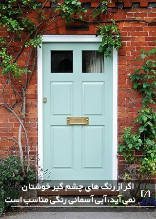 رنگ آمیزی درب ورودی منزل به رنگ آبی آسمانی و گیاهان زیاد