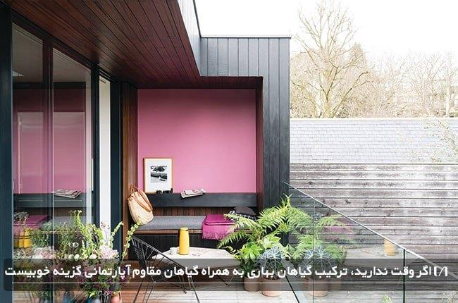 بالکن خانه ای با گل های بهاری و دیوار صورتی بسیار زیبا