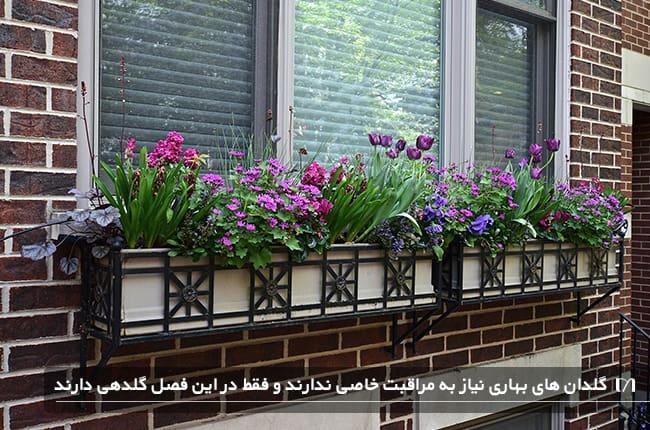 گلدان های پنجره ای خانه ای چیدمان شده با گلدان ها و گل های بهاری