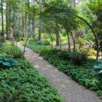 تصویر مسیری سنگ ریزه پوش که اطرافش را باغچه ها برگرفته اند