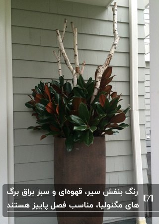 گلدانی پاییزی با تزئین ساقه های گیاه مگنولیا در کنار شاخه های خشک طوس