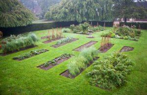 استفاده از گیاهان متناسب با مکان باغچه