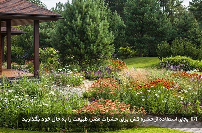 حیاط خانه ای که برای پروانه ها جذاب است و پر از گل و پروانه است