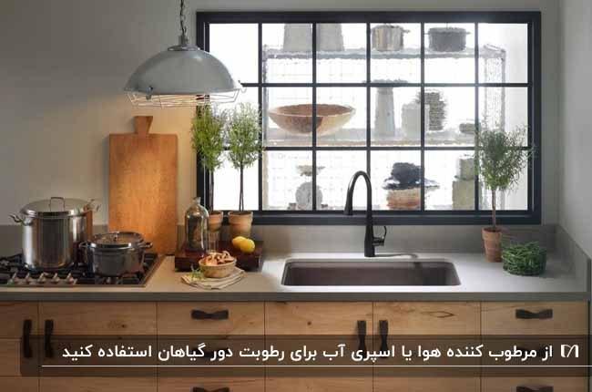 آشپزخانه ای با سینک زیر پنجره و گلدان های گل در فضای آشپزخانه
