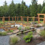 تصویری از تعدادی باغچه با جعبه های چوبی در محوطه حیاط