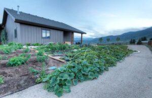 تصویری از یک باغچه شیب دار به جهت راحت کردن حفظ آب برای گیاه