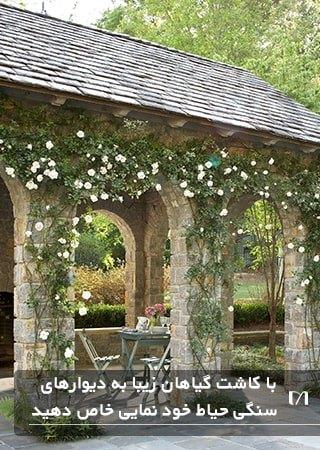 زیباسازی باغچه و دیوارهای سنگی با استفاده از گیاهان پیچکی سفید رنگ