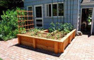 تصویر باغچه ای که برای ساخت آن به جهت تابش نور خورشید توجه شده است