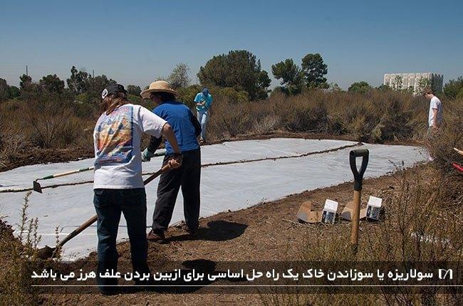 ازبین بردن علف های هرز باغچه با استفاده از روش سولاریزه کردن خاک باغچه
