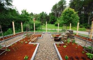 تصویری از یک باغچه سبزی با دسترسی آسان در حیاط خانه