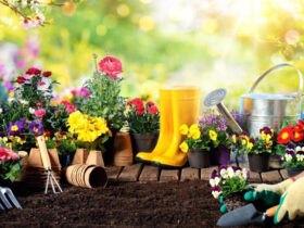 باغچه و وسایل مورد نیاز برای باغبانی