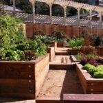 تصویری از باغچه های چوبی هم رنگ با دیوار و نرده ها