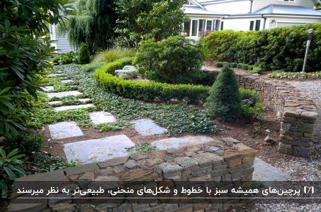 محوطه سازی با پرچین های منحنی توسط گیاهان همیشه سبز