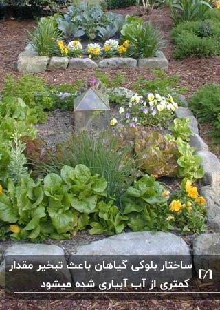 کاشت گیاهان به شکل بلوک های مربعی و ساخت باغچه ای زیبا