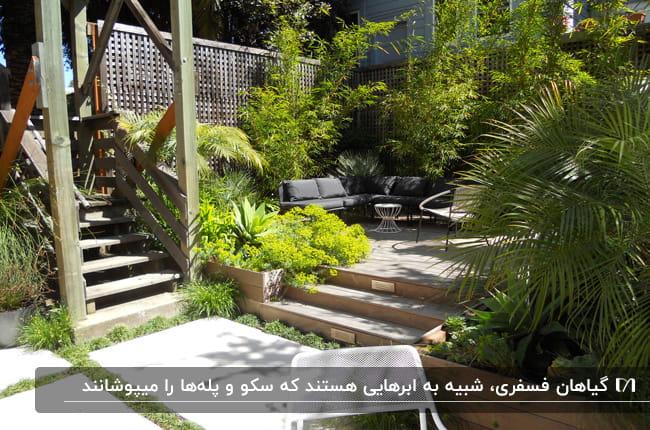 حیاط خلوت خانه ای با مبلمان راحتی، باغچه و گیاهان فسفری که روی پله را پوشانده اند