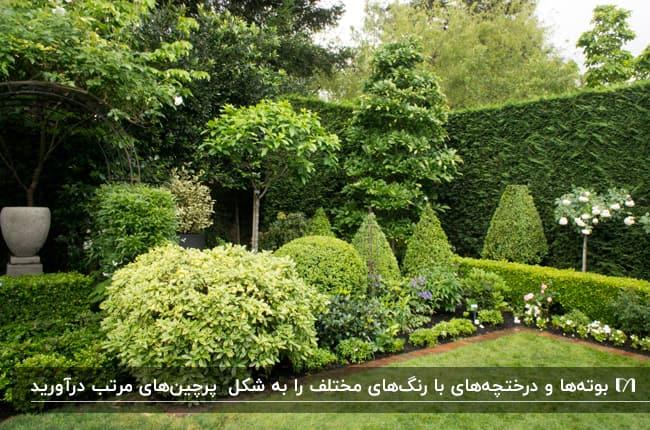 محوطه سازی با گیاهان همیشه سبزی که به اشکال هندسی مختلف هرس شدند