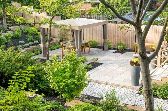 تصویری از محوطه سازی یک حیاط با پرگولای چوبی وگیاهان سبز فسفری