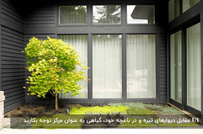 تصویری از یک باغچه به سبک معاصر با درخت و چمن های فسفری مقابل دیوار زغالی