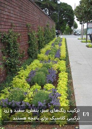 باغچه ای کنار دیوار آجری که با گیاهان سبز و زرد و بنفش و فسفری پر شده است