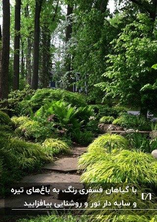 تصویری باغچه سایه داری که با گیاهان فسفری رنگ روشن شده است