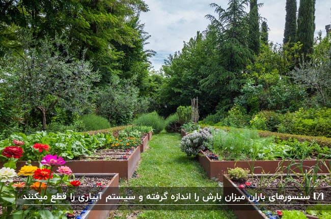 کاشت گیاهان در فلاور باکس های مستطیل شکل با سیستم آبیاری اتوماتیک
