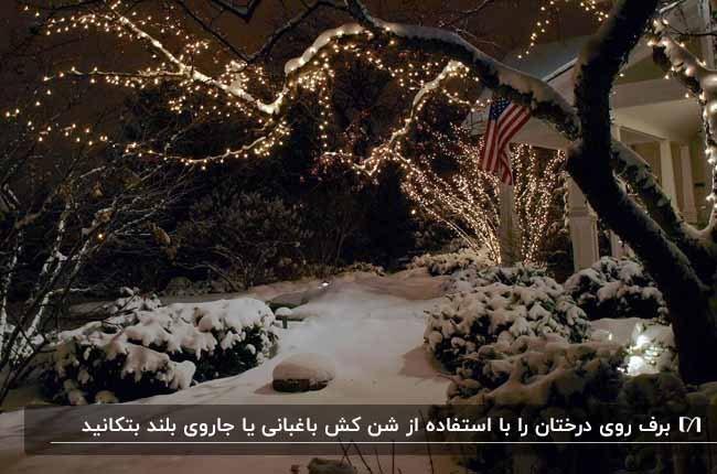 تصویر فضای باز برفی خانه ای که درختانش از برف پوشیده شده اند