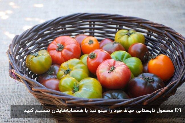 تصویر یک سبر قهوه ای حصیری با گوجه های قرمز و سبز در سایزهای مختلف