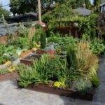 تصویری از یک حیاط که دور تا دورش با باغچه پوشیده شده است