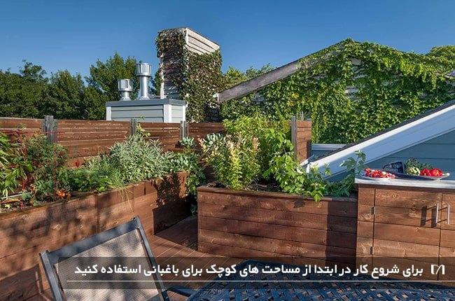 شروع باغبانی از باغچه های کوچک برای باغبان های تازه کار بهتر است