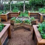 تصویری از یک حیاط دارای باغچه هایی با اشکال مختلف