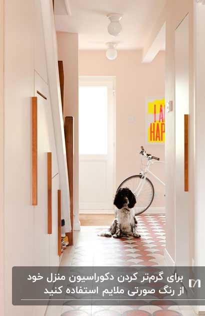 راهرویی به رنگ صورتی ملایم و سگی که انتهای راهرو نشسته است
