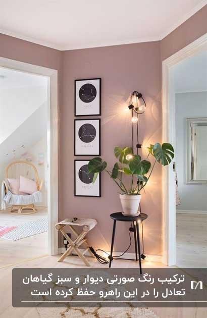 دیواری راهرویی به رنگ صورتی با یک گلدان گل و سه تابلو روی دیوار