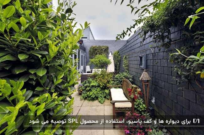 پاسیویی بدون سقف با گیاهان مختلف و دیوارپوش SPL