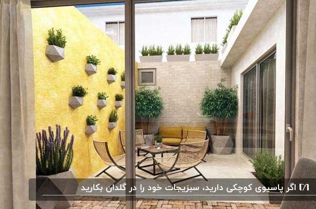 پاسیوی کوچک با دیواری زرد، تعدادی گلدان دیواری و زمینی و میز و صندلی راحتی