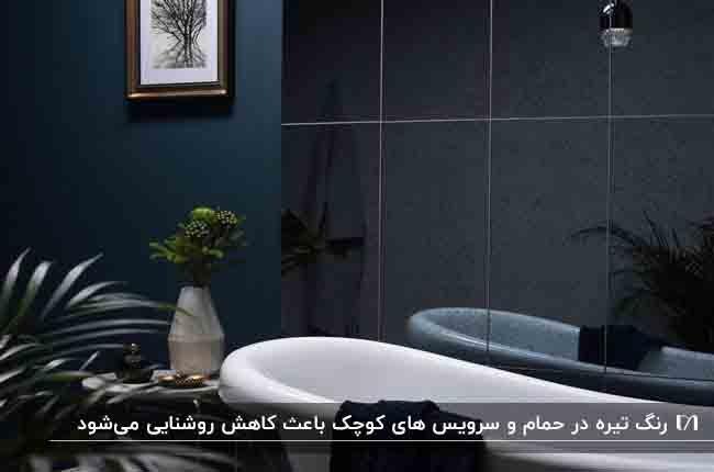 حمامی که با استفاده از کاشی های تیره کوچک بنظر میرسد