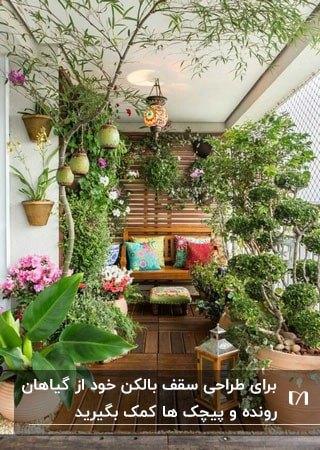 بالکنی سرسبز با گیاهان رونده ای که تا سقف رسیده اند