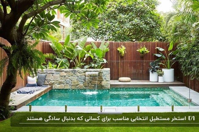 استخر مستطیلی کوچک در گوشه ای از فضای حیاط زیبای یک خانه