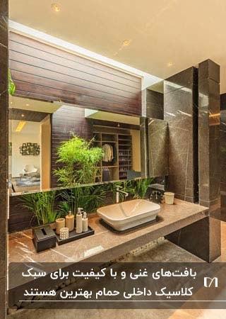 حمام براق سنگی به سبک کلاسیک با گیاهان تزئینی