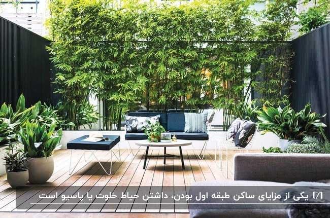 پاسیویی در طبقه اول با گیاهان سبز و مبلمان مشکی و کف پوش چوبی